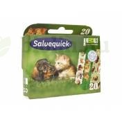SALVEQUICK ANIMALS PLANET 20DB