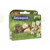 SALVEQUICK ANIMALS PLANET 20DB