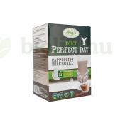 GLUTÉNMENTES ABY DIET PERFECT DAY CAPPUCCINO MILKSHAKE 12DB